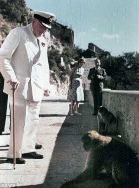 Gibraltar official the